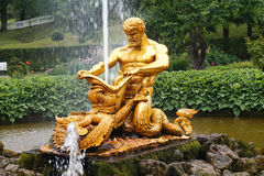 Samson royalty free stock images