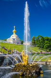 Samson Fountain in Peterhof, Rusland Stock Foto