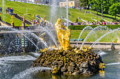 Samson Fountain in Peterhof, Rusland Stock Afbeelding