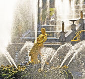Samson and the Lion Fountain. Peterhof, Russia Royalty Free Stock Image
