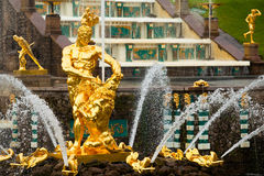 Samson and Lion fountain in Peterhof Grand Cascade Stock Image