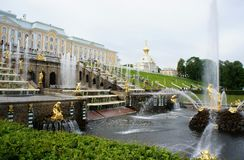 Samson tearing the lion's mouth. Fountain Samson rending the lion's mouth at Peterhof Stock Images