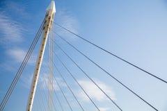 Samuel Beckett Bridge Dublin Fotografering för Bildbyråer