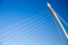 Samuel Beckett Bridge Dublin Arkivfoto