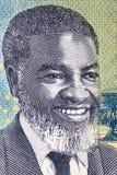 Samuel Daniel Shafiishuna Nujoma een portret royalty-vrije stock foto's