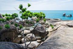 Samui海岛 库存照片