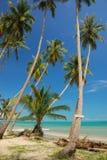 samui пляжа Стоковые Фото