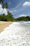 Samui Beach Royalty Free Stock Photo