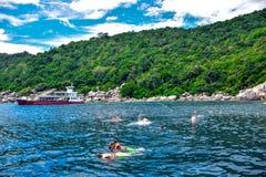 SAMUI-INSEL, THAILAND: Touristen sind korallenrotes Tauchen in Tao -Insel, die ein sehr populärer Touristenbestimmungsort für das stockfoto