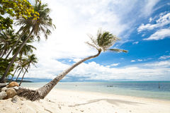 Samui Island Royalty Free Stock Photo