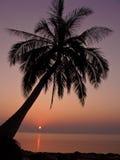 Samui Strand stockbild
