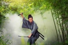 samurai royaltyfri bild