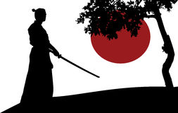Samurai Fotos de Stock Royalty Free