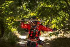 Samurai in ancient armor, with a sword ready to attack. Close-up Royalty Free Stock Photography