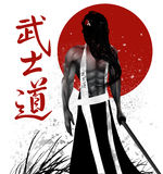 Samurai with background Royalty Free Stock Image