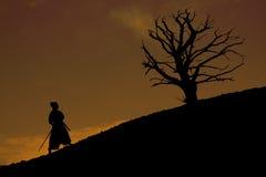 Samurai con el árbol Fotografía de archivo libre de regalías