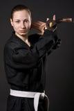 Samurai femminile Immagini Stock