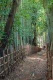 Samurai Footpath Stock Image