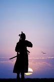 Samurai. Illustration of Samurai at sunset Stock Images