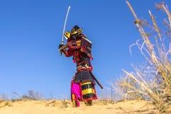 Samurai na armadura antiga, com uma espada guerreiro Fotografia de Stock Royalty Free
