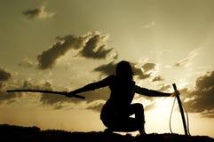 Samurai sul tramonto Fotografia Stock