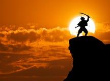 Samurai sulla cima Immagine Stock