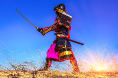 Samurai at sunrise in the field with the sword practices Stock Photos
