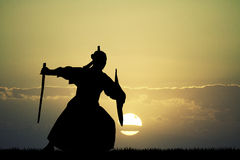 Samurai at sunset. Illustration of samurai at sunset Royalty Free Stock Images