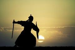 Samurai at sunset Royalty Free Stock Images