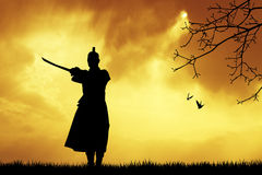Samurai at sunset Royalty Free Stock Image