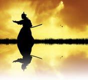Samurai at sunset Royalty Free Stock Photo