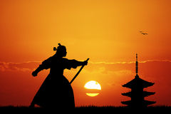 Samurai with swords at sunset. Illustration of Samurai at sunset Royalty Free Stock Image