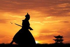Samurai with swords at sunset Stock Photography
