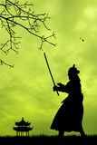 Samurai with swords at sunset. Illustration of Samurai at sunset Stock Images