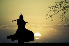 Samurai with swords at sunset Stock Photos