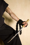 Samurai swordsman Royalty Free Stock Image