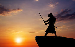 Samurai on top of mountain. Royalty Free Stock Image