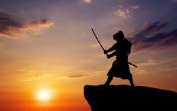 Samurai on top of mountain. Royalty Free Stock Image