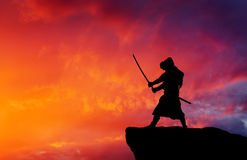 Samurai on top of mountain. Royalty Free Stock Photos
