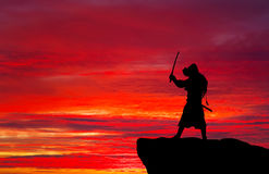 Samurai on top of mountain. Stock Images