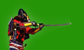 Samurai warrior with sword , isolated on the green background. Samurai in ancient armor, with a sword ready to attack close-up Stock Image
