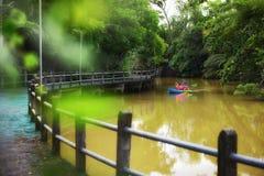 SAMUT PRAKAN, ТАИЛАНД - 13-ОЕ АВГУСТА 2017: Турист сплавляться в малом канале около майны велосипеда на челке Kachao в Таиланде стоковые фотографии rf
