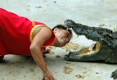 Samut Prakan, Thailand: Mann mit Krokodil Lizenzfreie Stockfotos