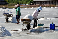 Samut Songkhram, Thailand: Harvesting Sea Salt Stock Images
