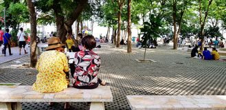 Samut Songkhram, Thailand - June 23, 2018: Old Asian women relaxing, talking and sitting beside on marble bench in park with green stock images
