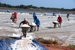 Samut Songkhram, Thailand: Salt Flats Royalty Free Stock Image