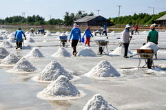 Samut Songkhram, Thailand: Salt Harvest Royalty Free Stock Image