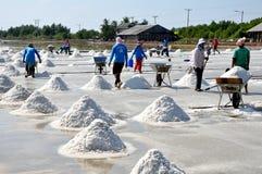 Samut Songkhram, Thailand: Salt Harvest Royalty Free Stock Image