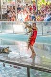 Samutprakan krokodillantgård och krokodilshow royaltyfri foto