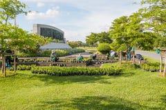 SAMUTPRAKAN TAILANDIA - 15 DE MAYO: El jardinero planta las flores en M Imagen de archivo libre de regalías